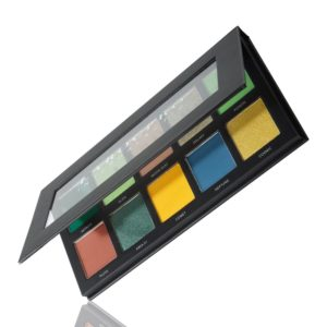 LaRoc Pro 10 Colour Eyeshadow Palette - Intergalactic 1